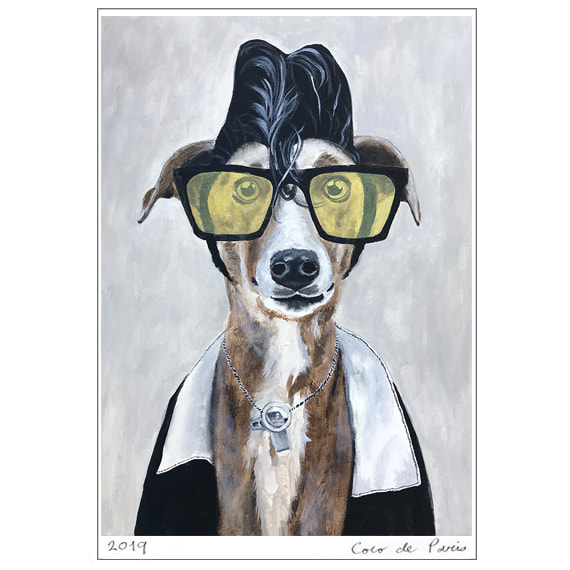 Buddy Holly Greyhound, seen on Coco de Paris