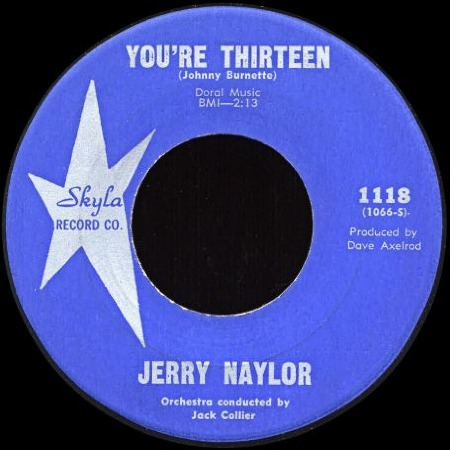 YOU'RE_THIRTEEN_Jerry_Naylor.jpg