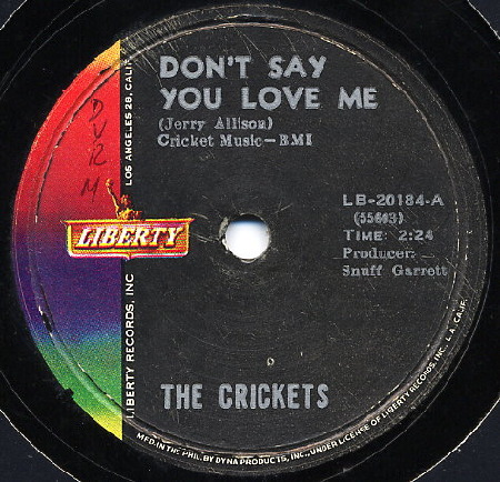 Crickets_Don't_say_you_love_me_78.jpg