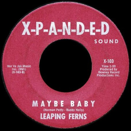 MAYBE_BABY_Leaping_Ferns_1965.jpg